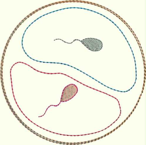 "embroidery design ""pregnant"" ""the begin of life"""